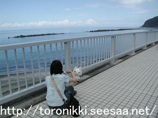新島旅行記10 5.jpg