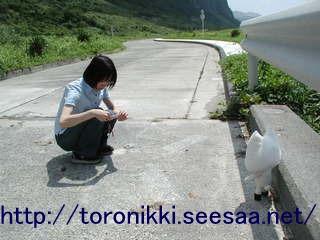 新島旅行記12 3.jpg